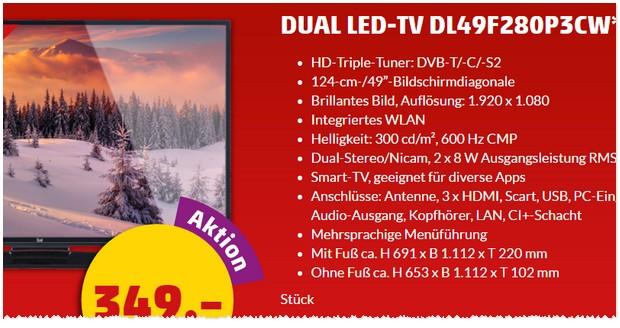 Dual Fernseher