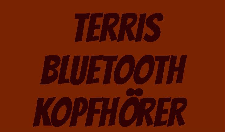 Terris Bluetooth Kopfhoerer