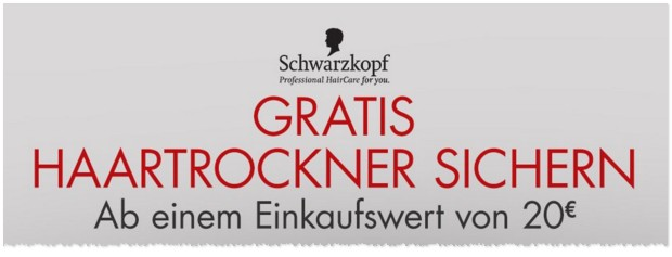 Schwarzkopf Haartrockner gratis