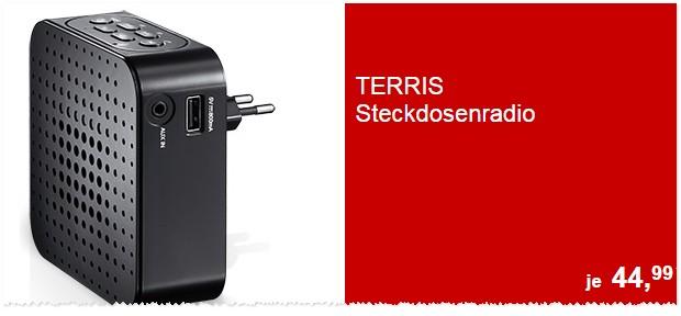 Terris Steckdosenradio